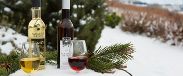 Ice wine and fruit wine